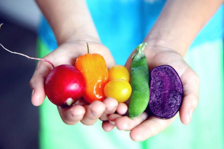 Sucre des légumes