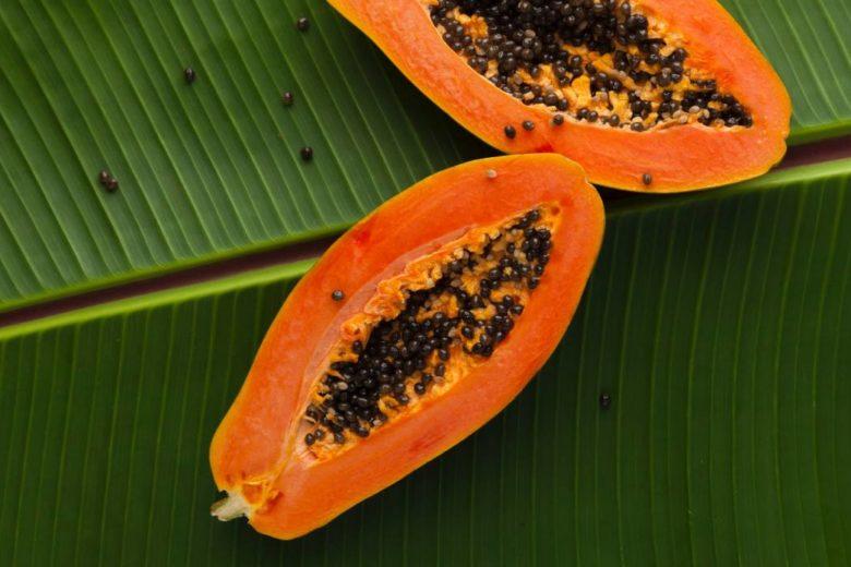 Masque visage à la papaye pour les peaux sèches