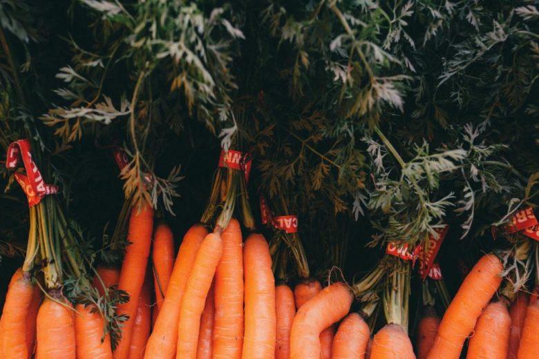 Huile de carotte pour la bonne mine