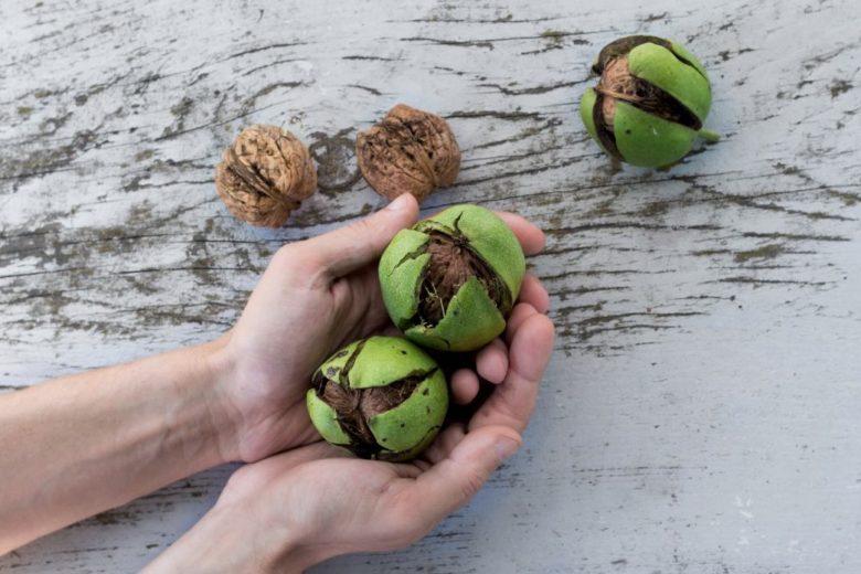 Gommage corps à la poudre de coque de noix